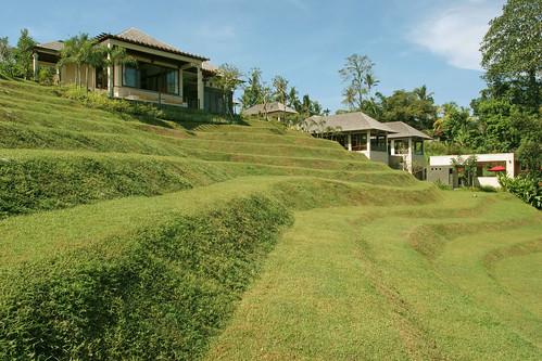 The Arsana Estate - Garden View