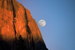 "Yosemite - ""El Capitan Moon""_Original shot.jpg (YOSEMITEDONN) Tags: california trees sunset moon beautiful nationalpark yosemite elcapitan otw"