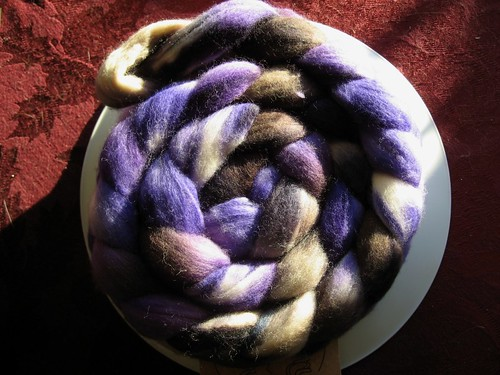 2009-01-20_twilight_merino.jpg