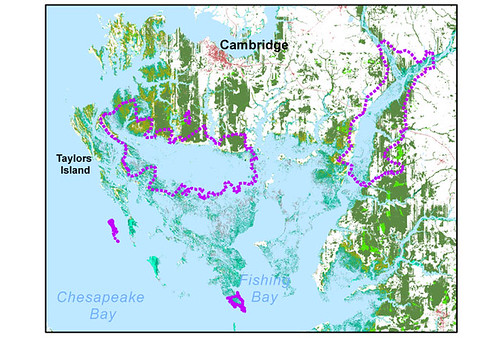 Blackwater NWR and MD's Eastern Shore in 100 years (courtesy of National Wildlife Federation)