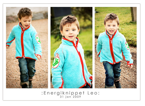 Energiknippet Leo
