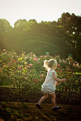 rose garden, summer evening (Le Fabuleux Destin d'Amélie) Tags: winter summer two girl childhood wonder happy 50mm evening kid toddler child play little pentax joy happiness blonde imagination joyful rosegarden pv laurarobertslightroompresets