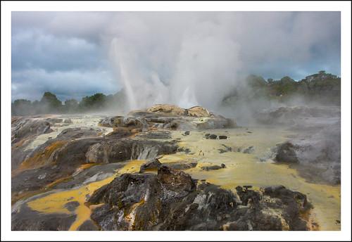 Zona geotermal en Rotorua, Nueva Zealanda / Geothermal area in Rotorua, New Zealand