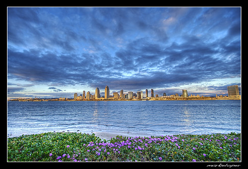 San Diego City Skyline  .:HDR:.