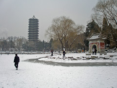 Walking on the frozen lake at Peking University
