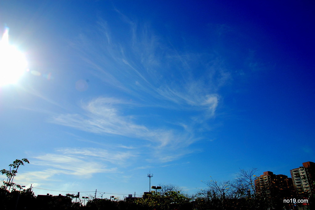 Sky in Super Blue - DSC_6833