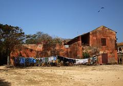 A louer (Aïch of the clan) Tags: maison murs gorée sénégal colourartaward