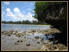 Invasion Beach 5 (Saipan Pictures) Tags: world pictures ocean beach point island japanese sand war gun pacific wwii machine battle tropical ww2 battlefield tropics saipan marianas cnmi northernmarianaislands agindan