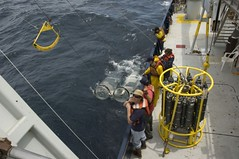 Bongo Net Recovery (Scripps_Oceanography) Tags: plankton newhorizon bongonet scrippsoceanography seaplex