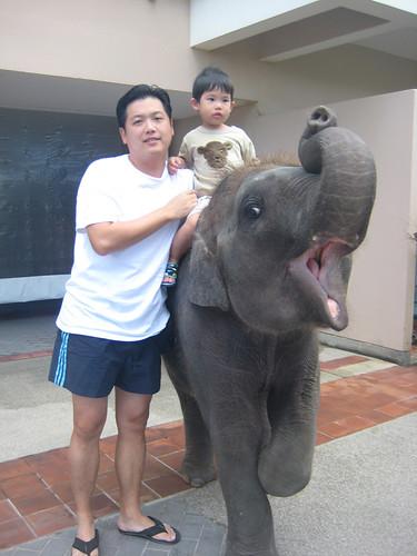 phuket26