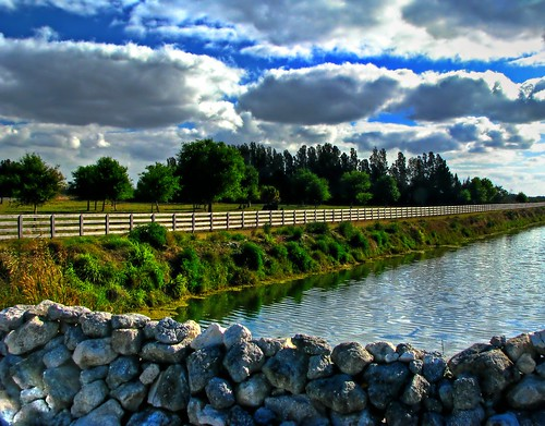 Central Florida Landscape by nobleup