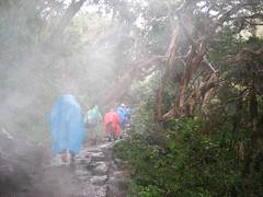 Backpacking Incan Trail - Machu Picchu Peru