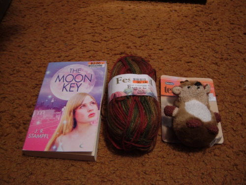 Things I picked up at Bigga Lots.
