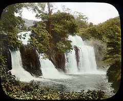 Waterfalls on the Theba River (The Field Museum Library) Tags: africa tree expedition forest river waterfall kenya 1906 mammals 1905 lanternslide britisheastafrica carlakeley zoologyexpedition handcoloredglasslanternslide thebariver