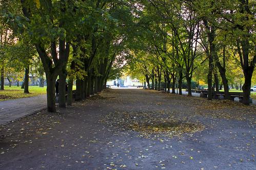 Sereikiškių park avenue
