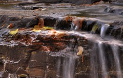Leaves in waterfall (KarenR-TB) Tags: autumn ontario fall leaves waterfall thunderbay trowbridgefalls coppercloudsilvernsun