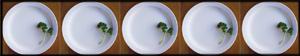 5 Clean Plates