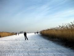 IMG_0172 (PanMan) Tags: skating waterland ijs schaatsen