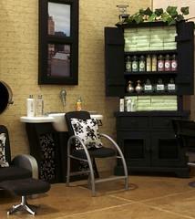 Salon Diorama