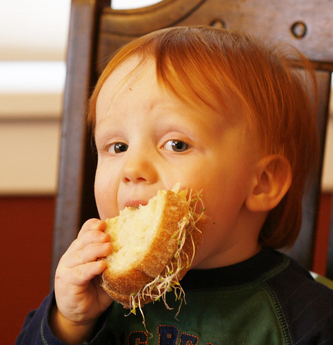 Gavin and his Hummus-Alfalfa Sprout Sandwich