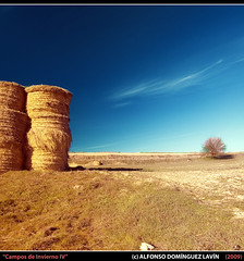 Campos de Invierno IV (Alfonso Domnguez Lavn) Tags: blue winter sky panorama orange tree luz yellow vertical azul clouds photoshop de evening spain nikon all shadows magenta valladolid amarillo rights cielo panoramica nubes tips processing rbol fields invierno technique paja sombras reserved hdr campos tarde alpacas pacas trucos ligths copyrighted cs3 tcnica rotoballe photomatix lagunadeduero procesado photographyrocks nikond40 narange vertorama wwwalfonsodominguezes alfonsodominguez