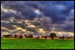 Rays of Sunlight ! (Bashar Shglila) Tags: trees light sun green beam ev rays libya tripoli soe hdr libyen photomatix lbia trabulus libi libiya liviya libija     lbija  lby libja lbya liiba livi