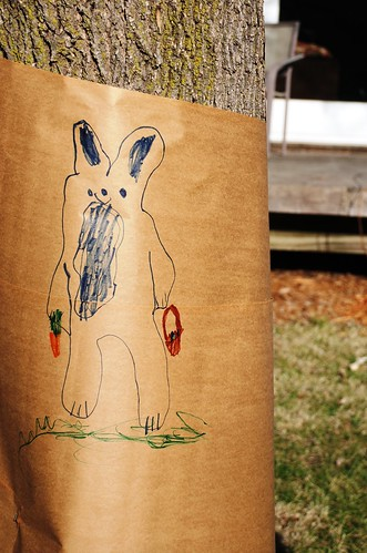 Z's bunny