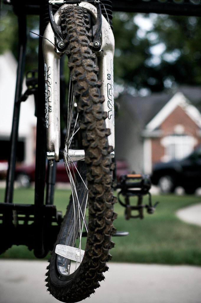 172/365 Basics of Trail Riding
