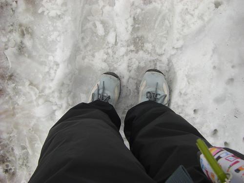 雪の上上陸