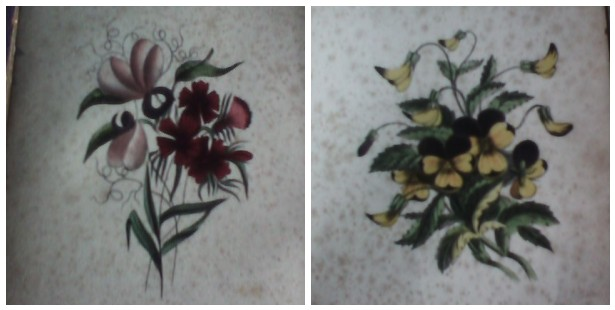 The Floral Forget Me Not book plate Pansy & Sweet Pea (1854)