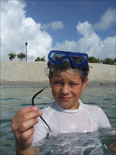 Jake catches a nice pipefish!