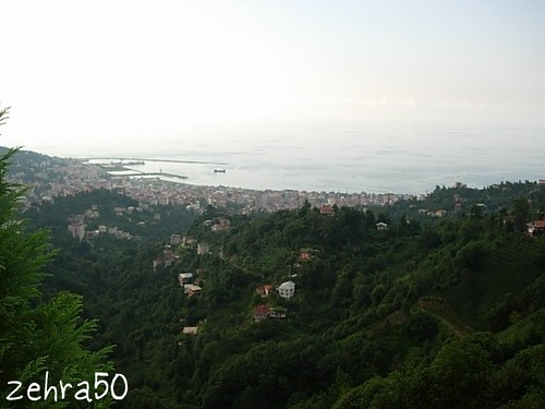 rize2