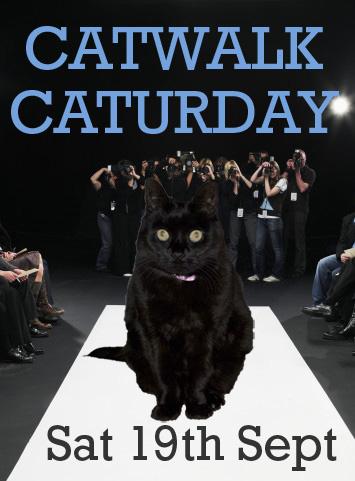 catwalk-huffle