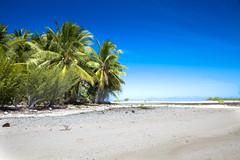 Honeymoon (804 of 308) (vgm8383) Tags: ocean pink beach coral canon sand honeymoon pacific tide dani southpacific 5d tahiti islet excursion mkii atoll rangiroa frenchpolynesia pinksands canon5dmkii 5dmkii