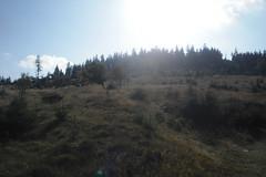 unterhalb Altknig (karsten13) Tags: feldberg 26092009