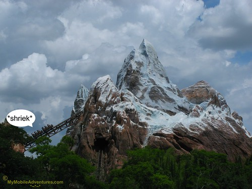 IMG_1502-WDW-DAK-Everest-riders-going-in
