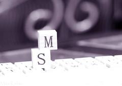 S ~ ♥ ~ M (Maryam.Ibrahim) Tags: