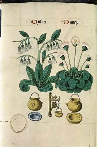 Cumfrey and Daisy, Cauldrons, powter plate, yellow dish.