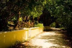Walkway in Hope Town