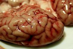 Eggs and Brains (Alesa Dam) Tags: food topv111 dinner lunch plate brains eggs bloody cerebro porc brein cerveau vains project365 hersenen verstand referenced challengewinner hersens 189365 thepinnaclehof tphofweek65