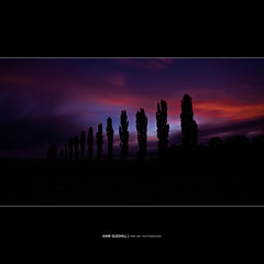 Soldiers Stand Tall ([ Kane ]) Tags: morning trees light newzealand sun sunrise army dawn countryside war farm country navy peaceful australia nsw kane airforce predawn anzac firstlight anzacday gleninnes gledhill elsmore 50d kanegledhill wwwhumanhabitscomau kanegledhillphotography elsmorensw