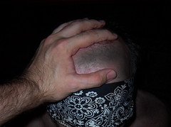 in hand (postbear) Tags: bear mouth relax open control feed throat blindfold
