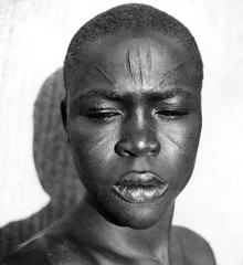 Africa in the early 1940s (gbaku) Tags: pictures africa portrait woman west art face photo women photos african kunst femme picture 1940s photographs photograph westafrica afrika anthropologie forties anthropology scarification femmes 40s africain afrique ethnography ethnology africaine westafrican ethnologie classicblackwhite afrikas