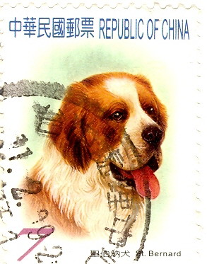 Saint Bernard Animal Stamps