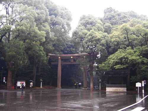torii at meiji shrine