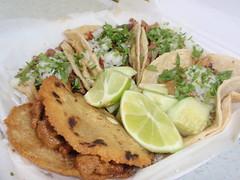 Tacos y Gordita
