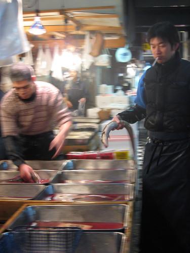 Live eel shopping, Tsujiki Market