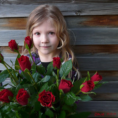 An angel  (Dave :-) (on and off)) Tags: flowers roses portrait girl smile dave angel happy child blond gift lovely