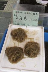 tsurumo-some kind of seaweed