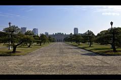 Believe it or Not (Lemuel Montejo) Tags: landscape tokyo nikon tokina1224 yotsuya evacuationarea believeitornot d90 explored boholano garbongbisaya emwing emwingmontejo lemuelmontejo